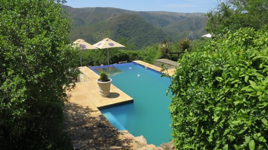 Addo, South Africa: infinity pool