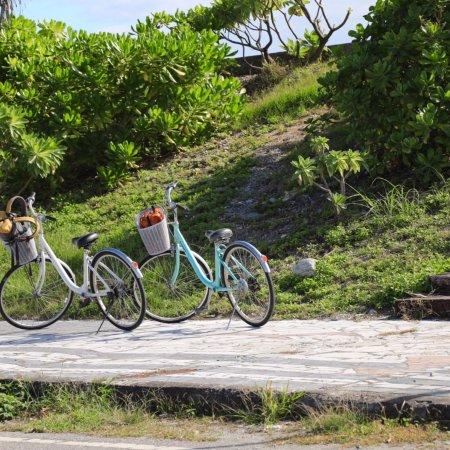 七星潭濱海自行車道:photo3.jpg