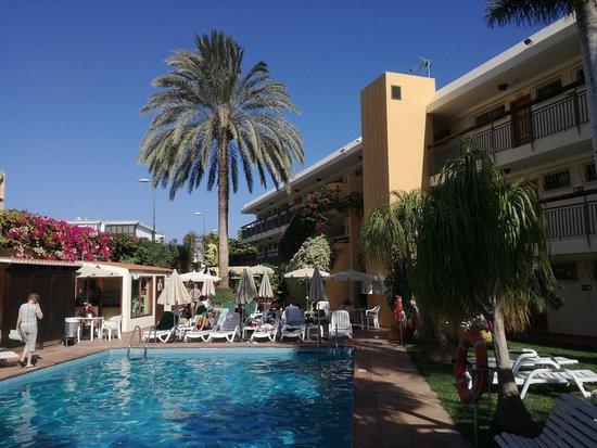 Nogalera apartamentos playa del ingles spanje foto 39 s reviews en prijsvergelijking - Apartamentos monterrey playa del ingles ...
