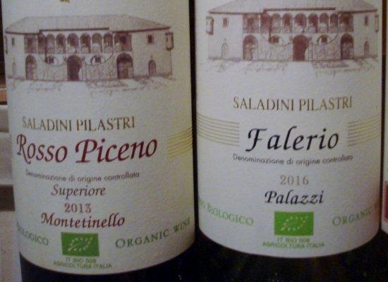 Azienda Agricola Saladini Pilastri