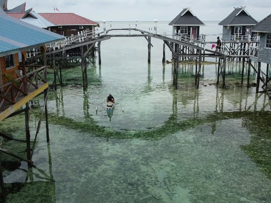 Arung Hayat Sea Adventures : DSC02880_large.jpg