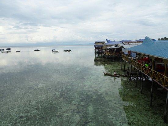 Arung Hayat Sea Adventures : DSC02879_large.jpg