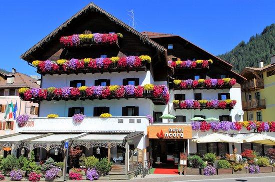 Hotel ancora updated 2018 prices reviews predazzo for Ancora hotel