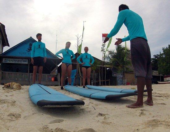 Dingo's Surf School