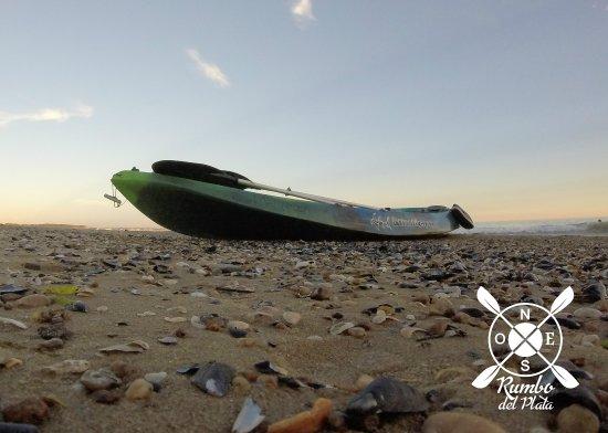 Rumbo del Plata-Punta en Kayak: Travesía Bahía de la ballena - Whale bay tour.