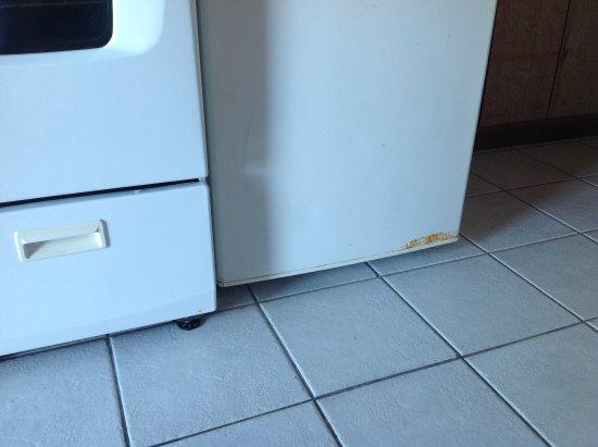 Long Key (Cayo Víbora), FL: Fridge & stove