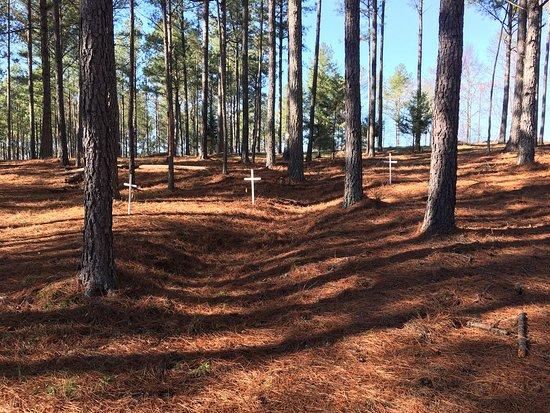 Kettle Creek Battlefield: photo3.jpg