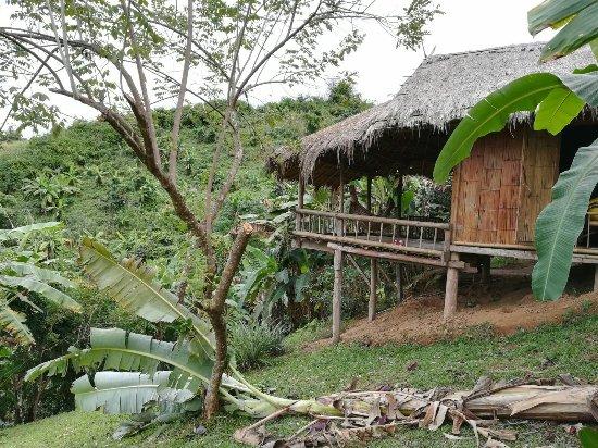 Bamboo Nest de Chiang Rai 이미지