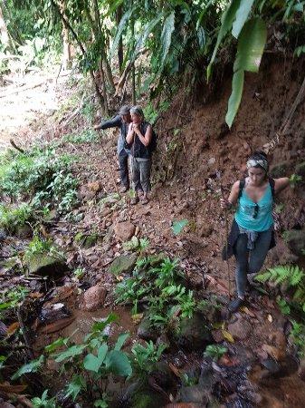 Drake Bay, Costa Rica: SENDERO