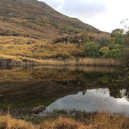 Killarney Nationalpark: photo0.jpg