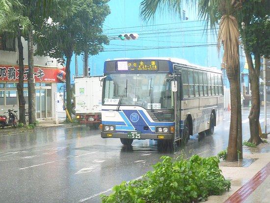 Local Bus Tour Okinawa