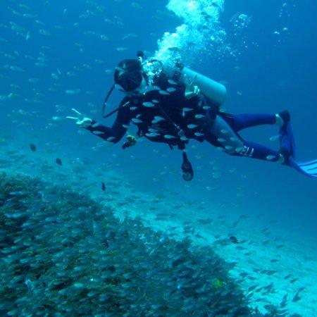Bangtao Dive Center: photo0.jpg