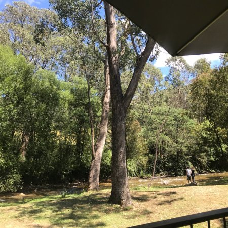 Harrietville, Австралия: photo2.jpg