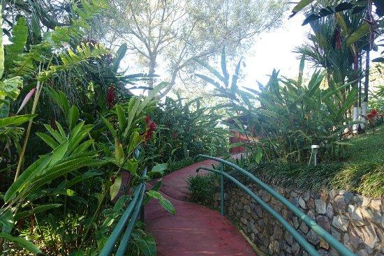 San Gerardo, Costa Rica: DSC06812_large.jpg
