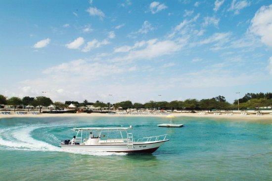 Coral Beach Hotel Jubail Website