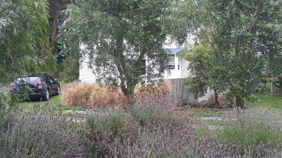 St Leonards Vineyard Cottages: 20180112_163900_large.jpg