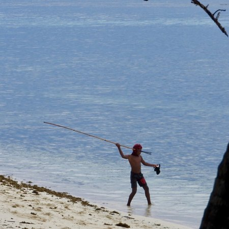 Qamea Island, Fiji: photo1.jpg