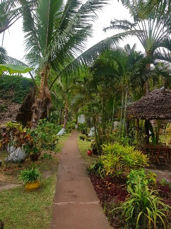 Mahambo, مدغشقر: 20180111_173621_large.jpg