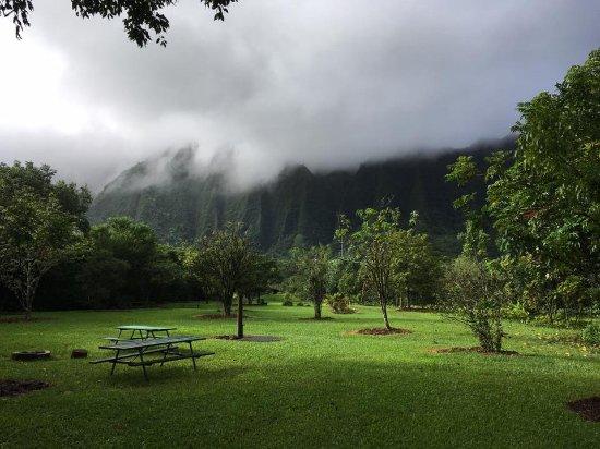 Kaneohe, Hawái: Campsite