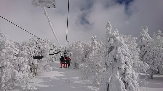 Kaminoyama, Japan: 一番上のペアリフトは、すぐ脇に樹氷が。