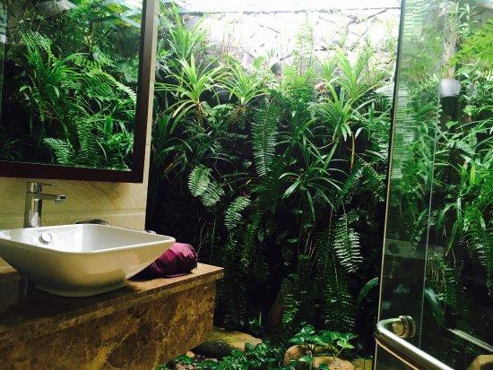 Hoang Ngoc Resort: photo1.jpg