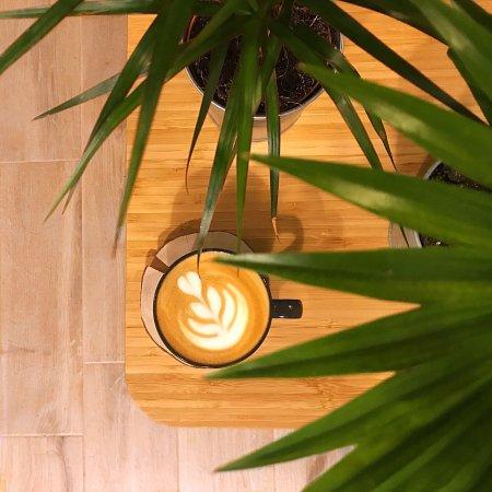 Kawiarnia Czkawka照片
