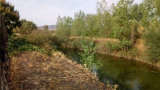 El Robledo, إسبانيا: La parte de atrás de la casa