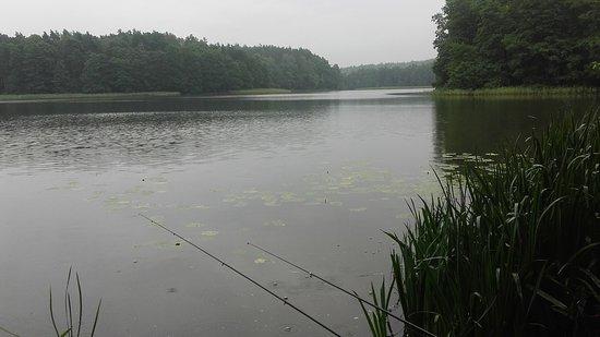 Stare Jablonki, Polonya: Jezioro-na ryby