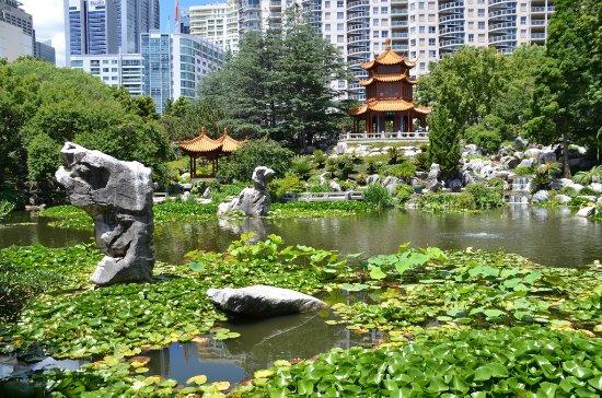 Chinese Garden - Picture of Chinese Garden of Friendship, Sydney ...