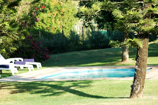 Nanaga, South Africa: Pool in the garden