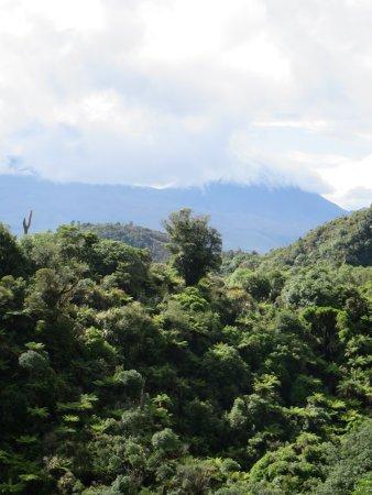 National Park Village, Nya Zeeland: 42 Traverse