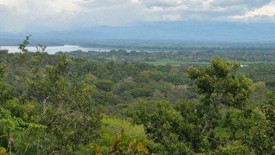Isla Boca Brava, Panamá: Viewpoint looking landward