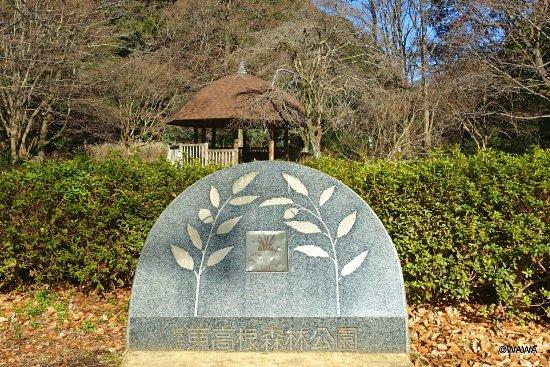 Higashi Takane Forest Park