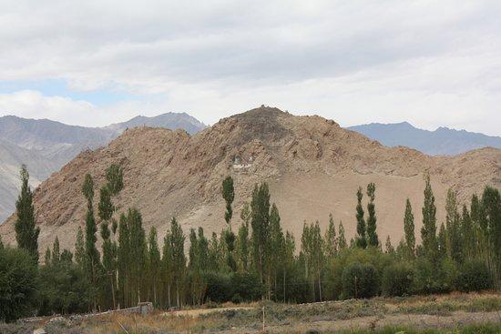 Ladakh Sarai: View from Balcony
