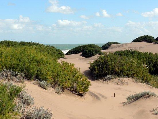 Tres Arroyos, Argentina: Medanos, mar ... verde hermosura