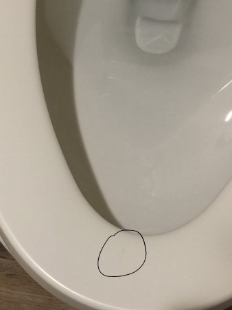 Best Western Dulles Airport Inn: Urine stain on toilet