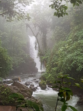 Vara Blanca, كوستاريكا: 20180111_135640_large.jpg