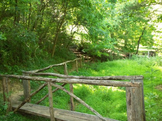 Candler, Carolina del Norte: One of our many trails around the park!