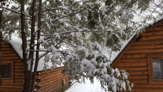 Candler, Carolina del Norte: Cozy cabins in the winter