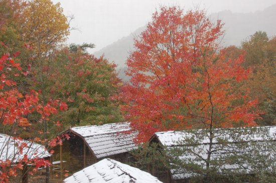 Candler, Carolina del Norte: Cabins in the fall