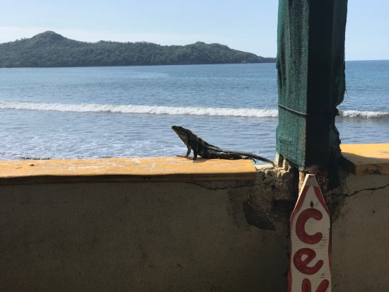 Brasilito, Costa Rica: view from our table