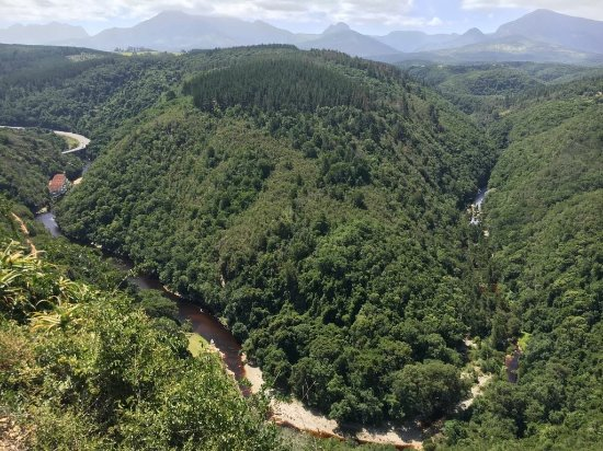 Wilderness, Sudáfrica: IMG-20180109-WA0002_large.jpg