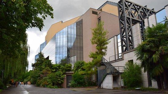 Stravinski Auditorium