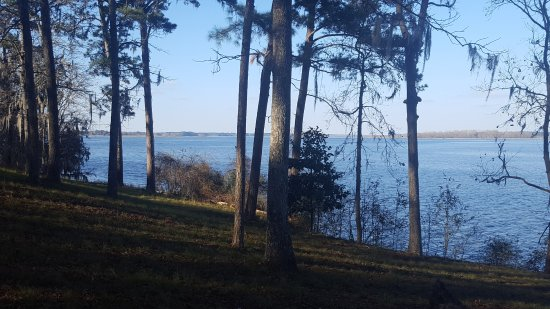 Sneads, FL: Lake Seminole