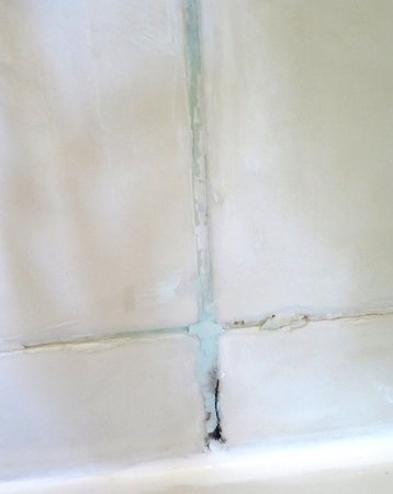 Himley, UK: Mould in the shower cubicle.
