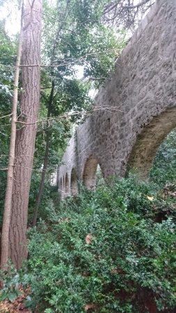 Trsteno, Kroatië: Inside the Arboretum