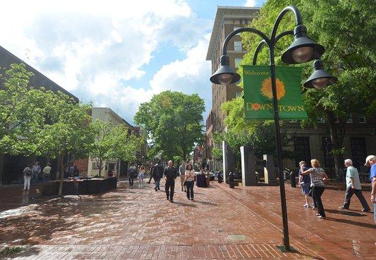 Historic Downtown Mall : la strada principale