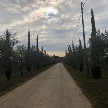 Locanda del Bugiardo: photo0.jpg