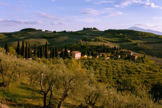 Monticchiello, Italy: Vista do muro logo em frente ao restaurante