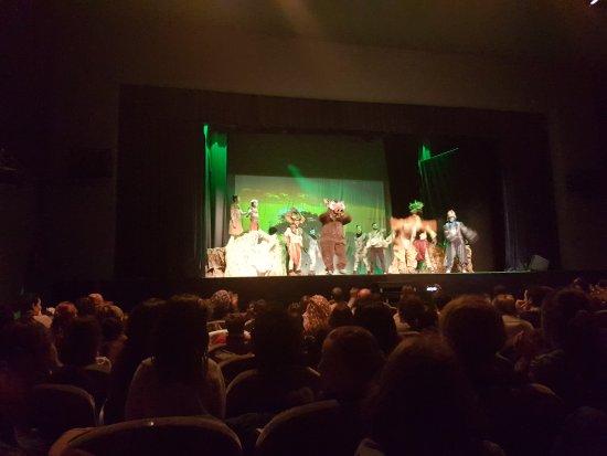 Teatre Flumen